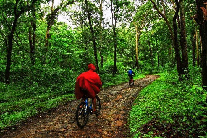 Coorg-to-Munnar is one of the most scenic cycling routes in India