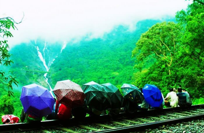 Dudhsagar falls, one of the best places to see in goa in monsoon