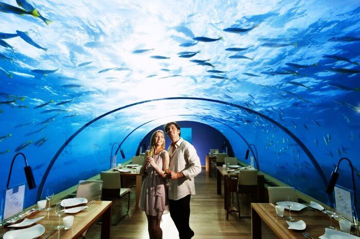 Dining at Ithaa Underwater Aquarium Restaurant is one of the most fun things to do in Maldives