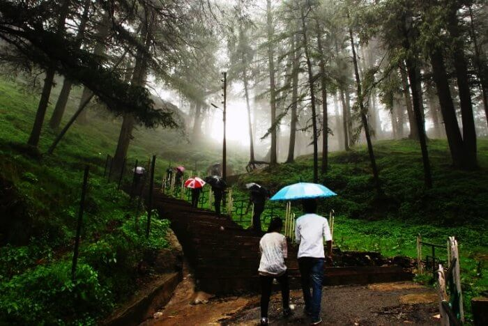 Travelers trekking upto the Jakhoo hills in Shimla