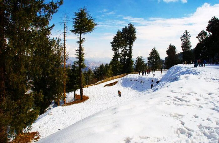 Kufri is a one of the many popular places to visit in Shimla in July