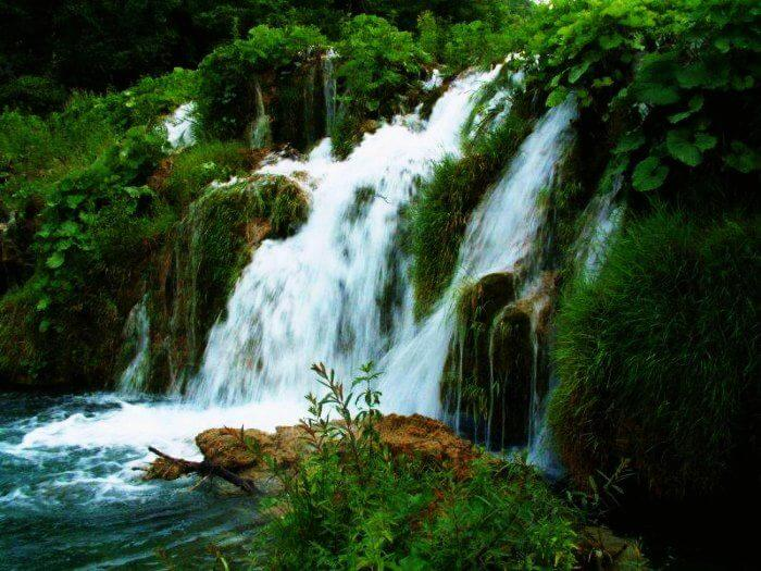 Amongst the many waterfalls near Delhi, a visit to the gorgeous Rahala falls is a must!