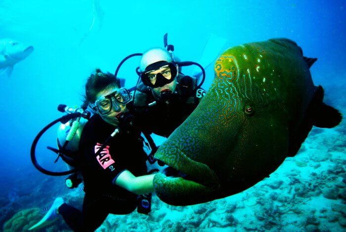 Amongst the many exciting things to do in Maldives, go Scuba diving with your partner for a thrilling experience