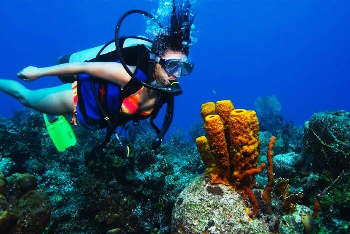 Scuba Diving in Maldives, attracts plethora of divers and first timers to its exquisite coral beauty