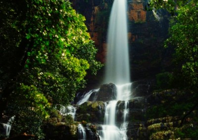 One of the most beautiful waterfalls around Hyderabad, Talakona are a must visit during monsoon.