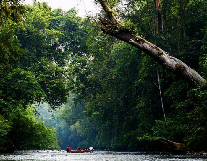 Picturesque and one of the best honeymoon places in Malaysia for some wild adventure