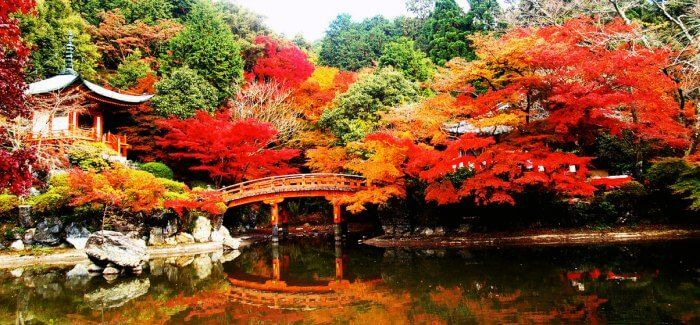 Kyoto in Japan is the most beautiful place to wake up on your first anniversay