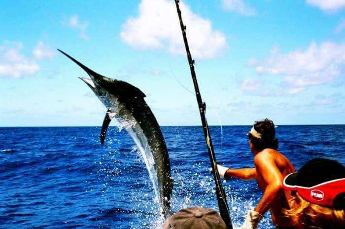 Game fishing in Andaman