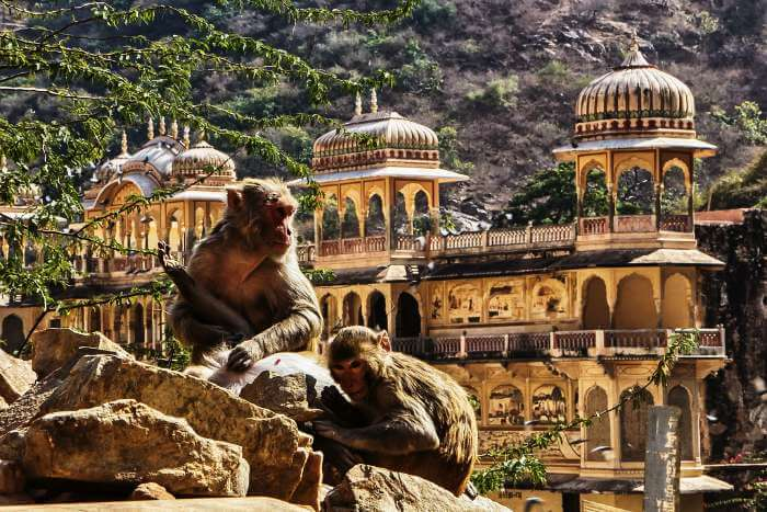20 Spectacular Tourist Places In Jaipur