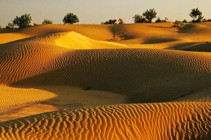 The vast spread of naturally formed Sand Dunes in Jaisalmer