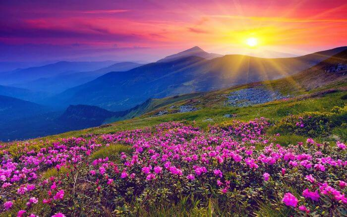 The sun rays reach out to one of the most beautiful places in India- Valley of Flowers