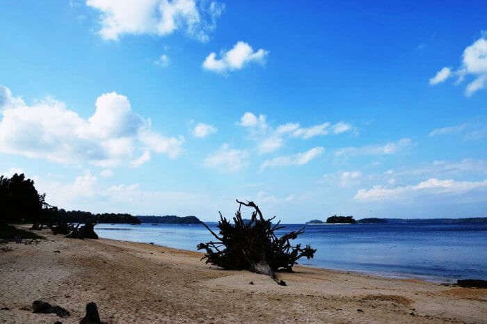 The rugged shores of Wandoor Beach