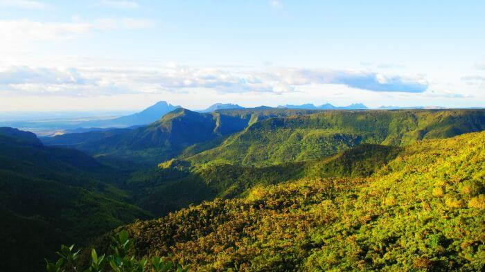 Enchanting mountains at Black River Gorges National Park covered in a blanket of greenery