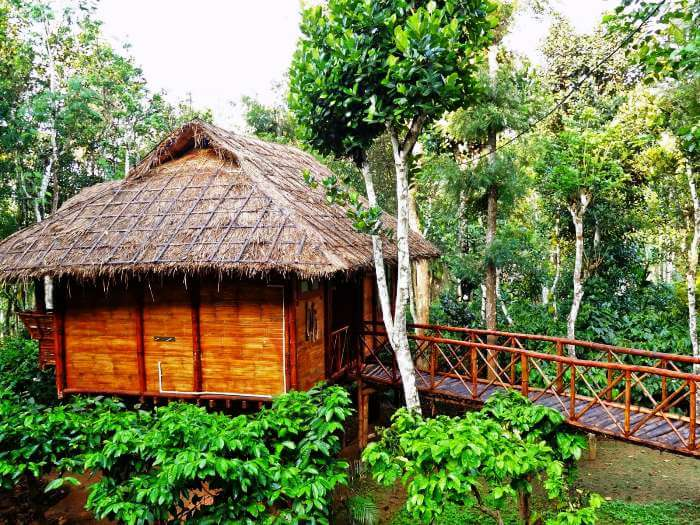 Thatched roof cottage at Windermere Estate in Munnar.