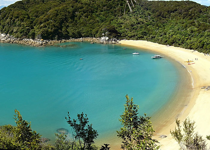 The coastline of Abel Tasman National Park is a tourist attraction in New Zealand that boasts of exotic bird collection