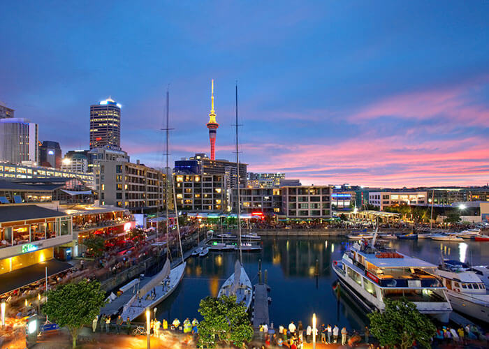 10 Great Spots to Find Single Cougars in Auckland in