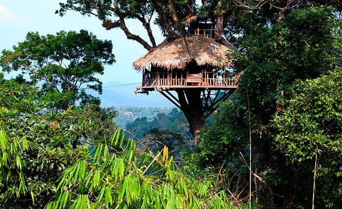 Bokeo Natural Reserve in Laos have tree houses