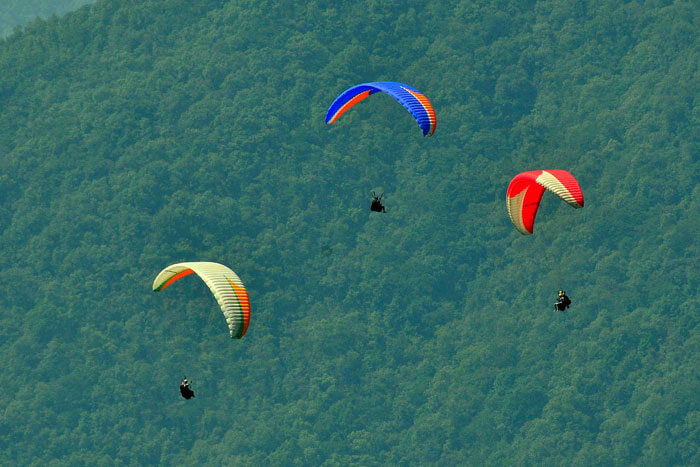 Paragliding in Himachal amidst the greenery of hills