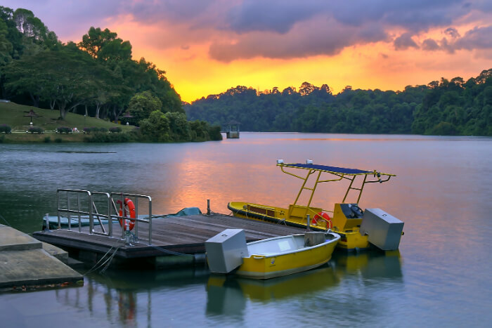 MacRitchie Reservoir in Singapore