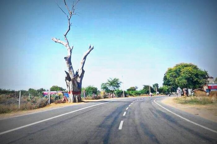 Shortcut to Bhangur