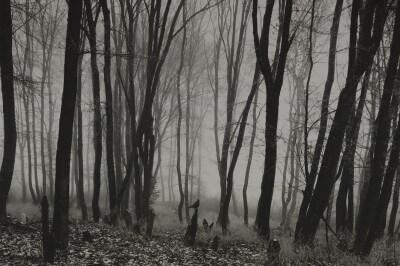 foggy_graveyard_by_no_data-d4xc4l3