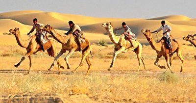 Camel safari at the Sam Sand dunes