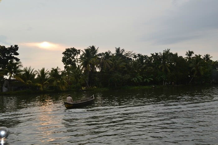 A picture of backwaters in Alleppey
