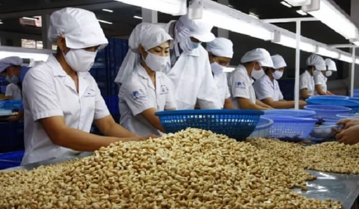Cashew refining in Kerala