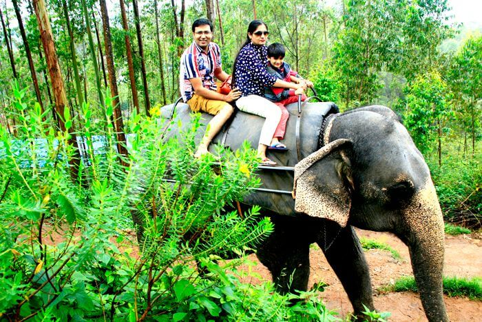 Vinit enjoys an elephant ride with family in Munnar
