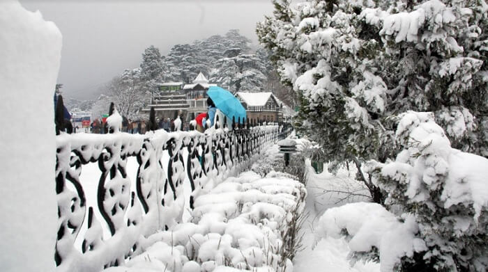 Tourists from planes flock to see snowfall in Kufri
