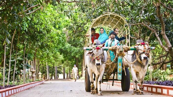 A bullock cart safari through the resort