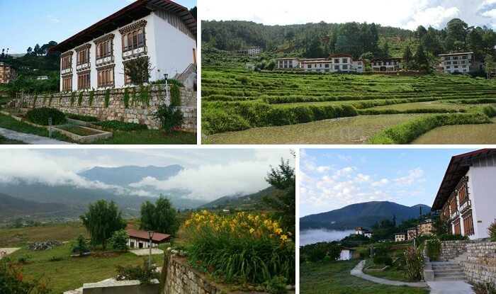 A collage of the many views of Drubchhu Resort at Punakha