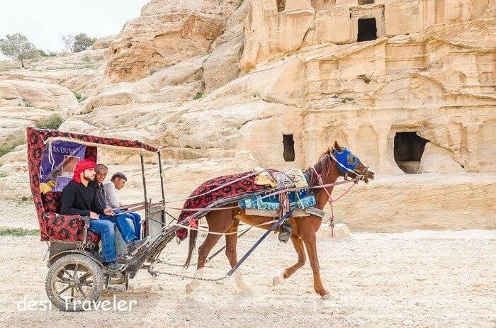 Horse carriage in Jordan