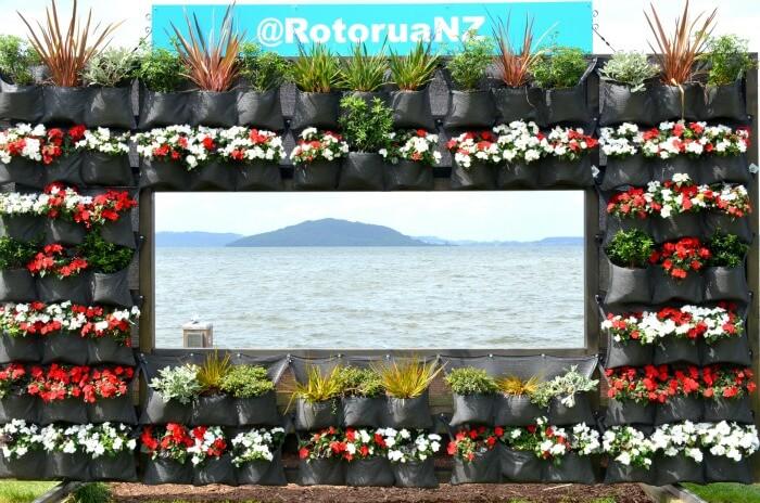 Beautiful sea and mountain view from the seaside Rotorua