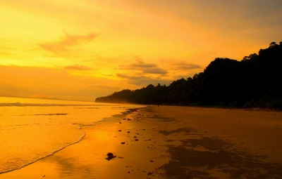 A beautiful looking Radhanagar Beach on Havelock Island during sunset