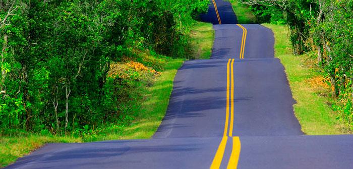 The road leading from Dehradun to nainital
