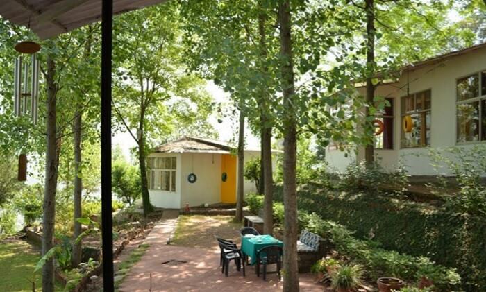 Lawn at the Writer's Hill Resort near Renuka ji