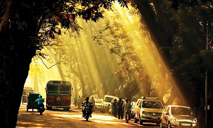 Sun passes through the road and hits the haunted street at Aarey Milk Colony