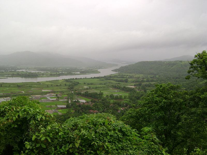 the green chiplun