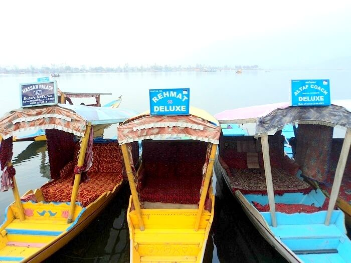 Shikara ride in Dal Lake