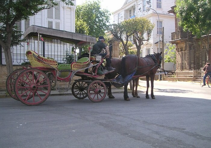 horse-carriage-princes-islands-istanbul