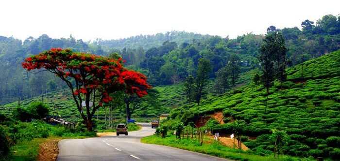 The tranquility of the best tourist place in Thekkady