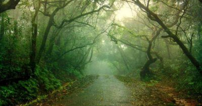 One of the places to visit in Mahabaleshwar