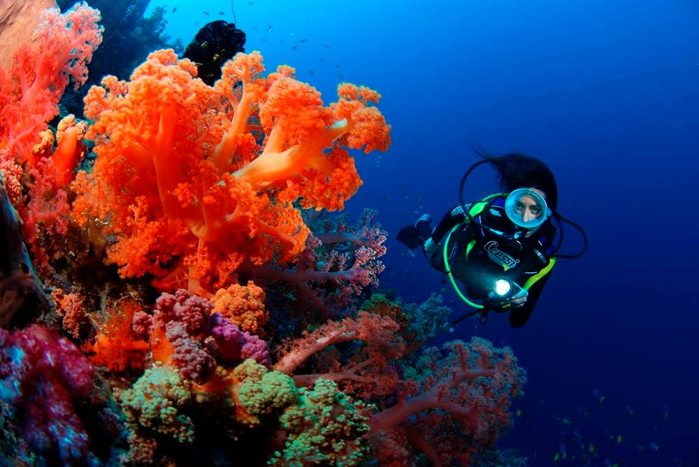 A young maid scuba-diving through the coral reefs of Waidroka