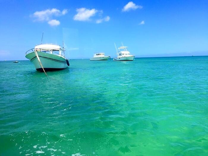 Blue Safari in Mauritius
