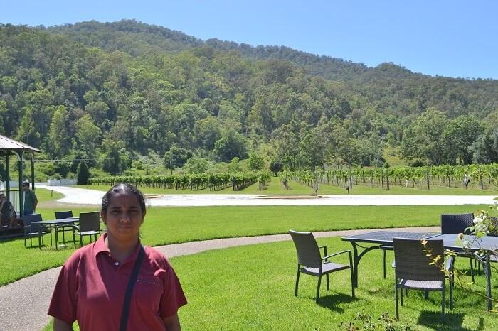 OReilly Vineyard Canungra Valley Australia
