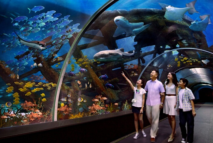A family enjoying the charms of Sentosa Underwater World