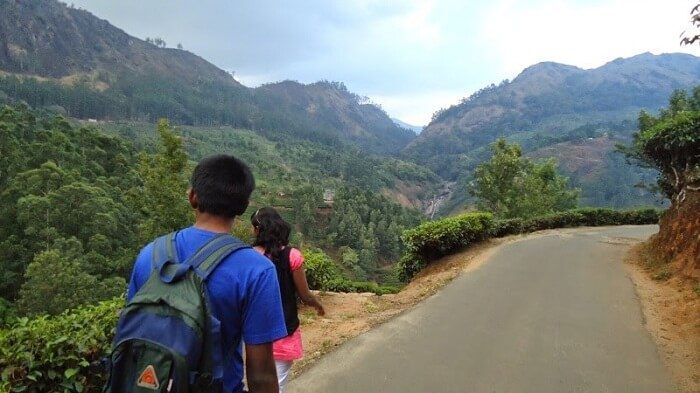 The most beautiful hill amongst Munnar trekking