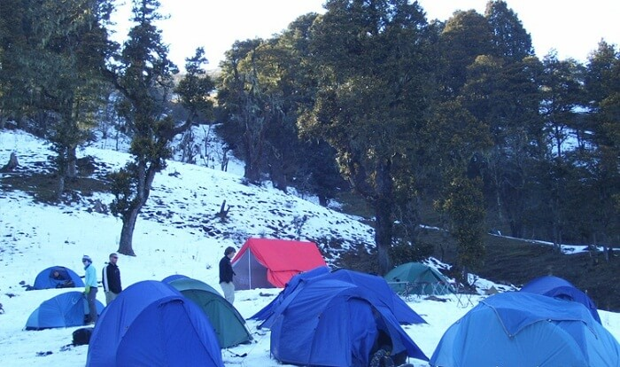 People rest in tents on the snow carpet on a Dayara Bugyal trek