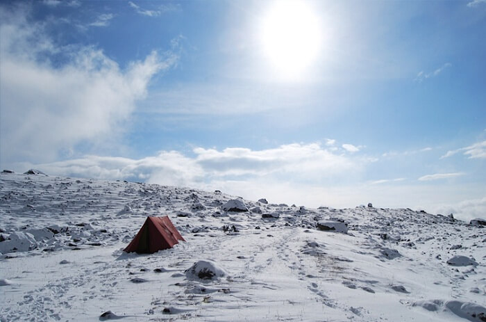 A lone tent on the snow flatland set up during the Dzongri winter trek